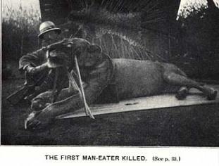 Tsavo Man Eaters | Atlas Obscura