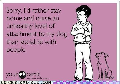 sorry, I'd rather stay home and nurse an unhealthy level of attachment to my dog than socialize with people. #haha #sotrue #seriouslythough #lovemypups #morethananything