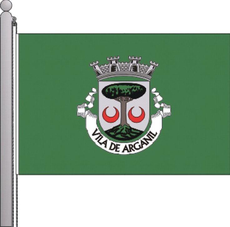 Bandeira de Arganil