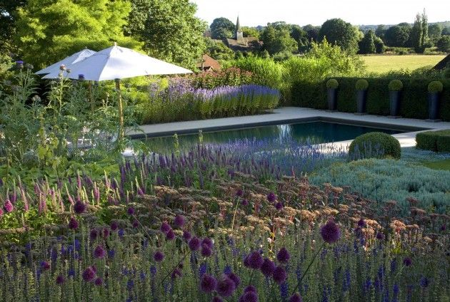 Luxury outdoor swimming pool, Surrey