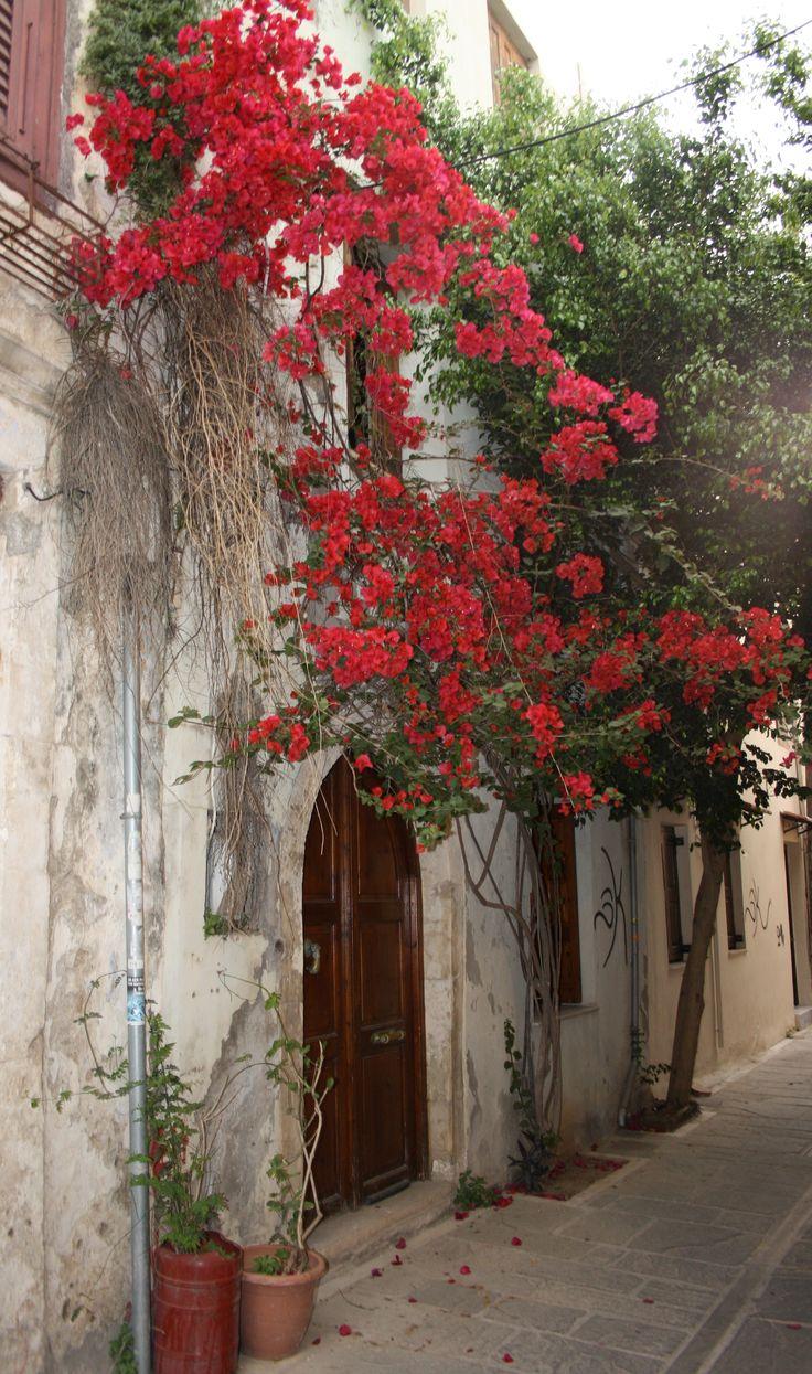 Red. Flowers. Old Street. Rethymnon. Crete. Greece.  Photo: http://se.pinterest.com/berggren_f