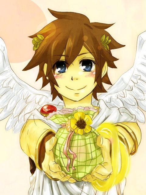 53 best images about Kid Icarus on Pinterest | Names, Kid ...