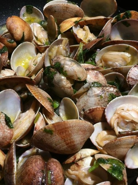 Beautiful Clams with Garlic Coriander and Olive Oil. Special Portuguese Mother's Day Recipe by @celiapedroso