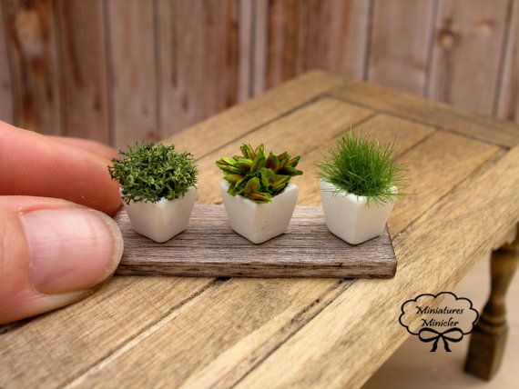 Dollhouse miniature herb plants 1:12 scale in 3 white pots on an aged board- nice for a kitchen window herb garden