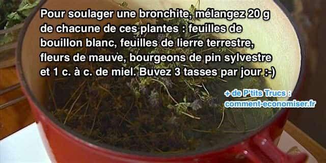 Vous avez des quintes de toux virulentes et des maux de tête ? Si en plus, vous sentez que vous avez des glaires dans la gorge, c'est sûrement que vous avez une bronchite. Le remède naturel est de prendre une tisane avec un mélange de plantes. Regardez :-)  Découvrez l'astuce ici : http://www.comment-economiser.fr/comment-soigner-bronchite-rapidement-avec-remede-grand-mere.html?utm_content=buffer0f91e&utm_medium=social&utm_source=pinterest.com&utm_campaign=buffer