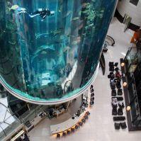 Estos son los ascensores más increíbles del mundo