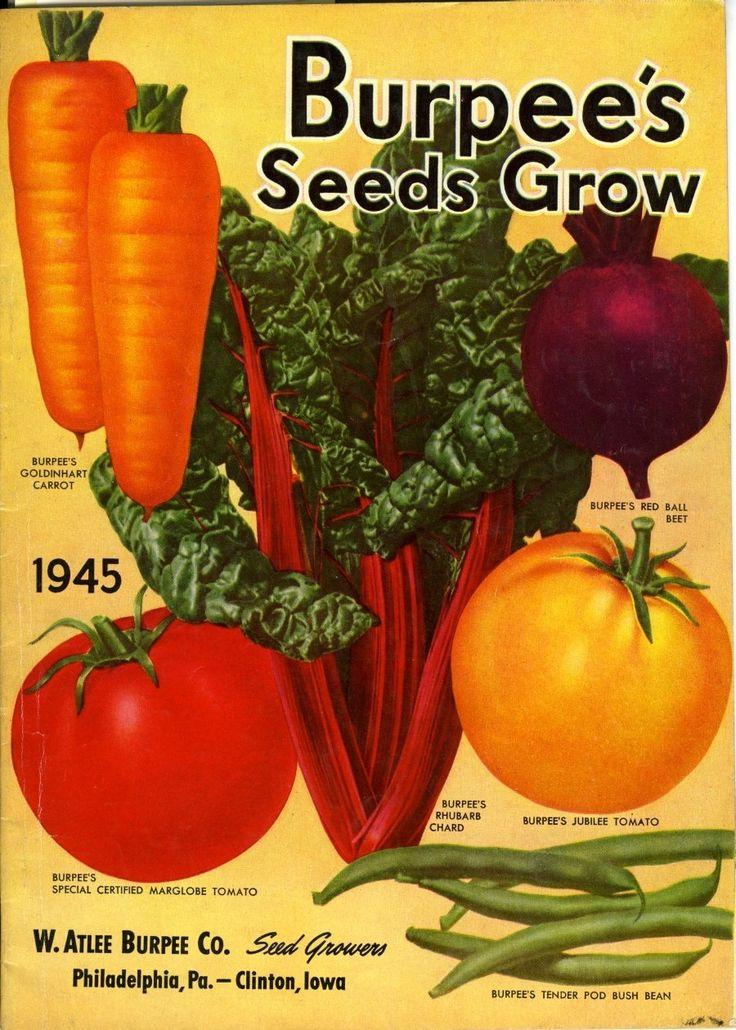 Burpee Seeds Company - BestBonsaiTree.net