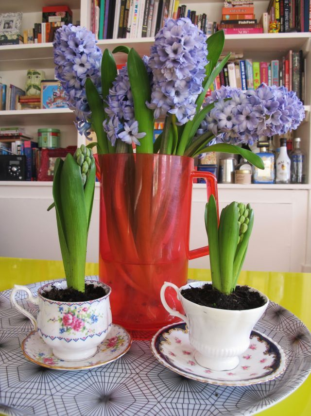 Jenni's Table / Teacups and Hyacinths: An Afternoon of DIY.