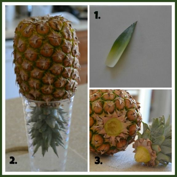 how to cut a pineapple with knife
