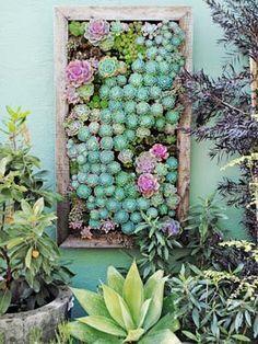 Amazing colors!! Vertical Gardening Ideas - How To Make a Vertical Garden - @Elizabeth Cassinos Living Magazine