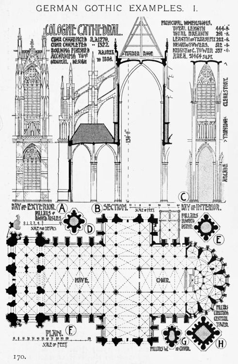German Gothic - Cologne Cathedral, Germany A History of Architecture on the Comparative Method by Sir Banister Fletcher