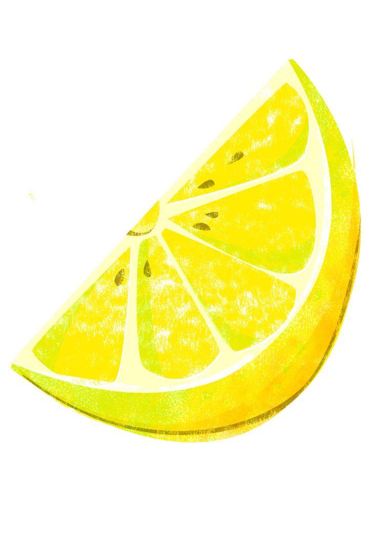 Lemon Slice Illustration Giclee Print, Food Illustration, Fruit & Veg Illustration Print, Kitchen Decor by Naomibatts on Etsy