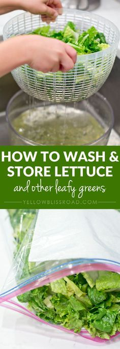 How to Properly Store Lettuce and Other Leafy Greens to keep them fresher longer