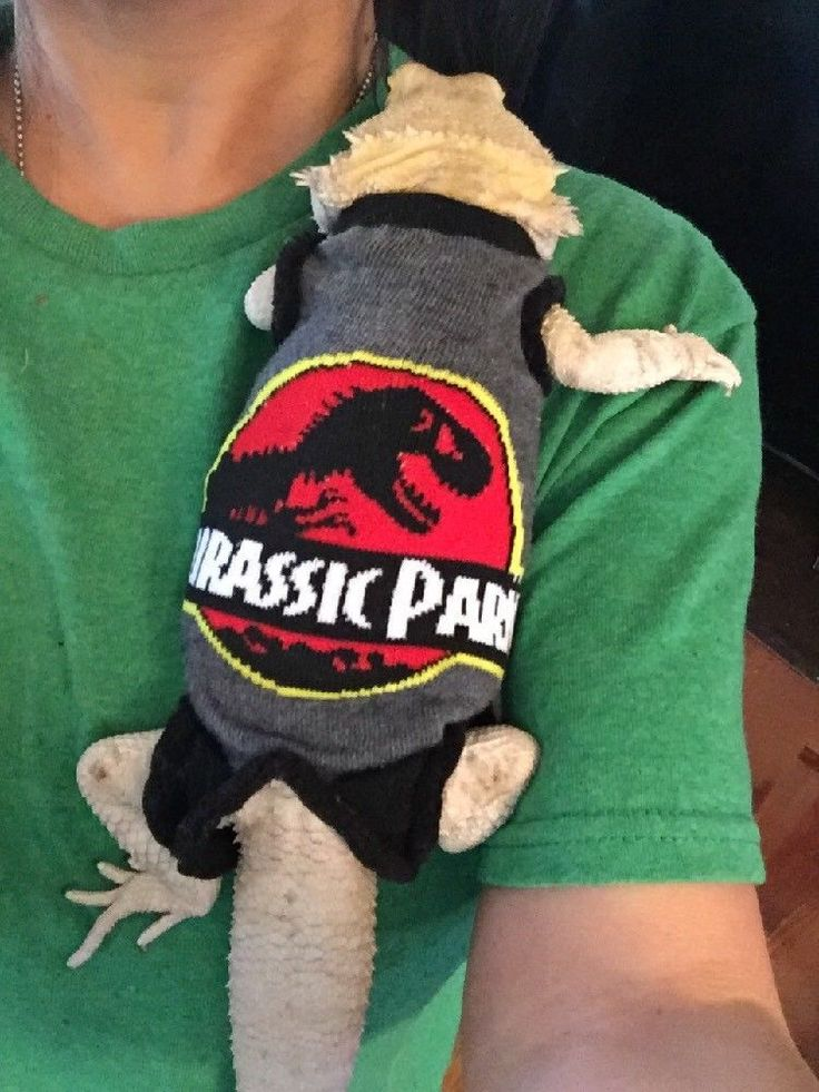 JURASSIC PARK DESIGN 1 XLRG SLEEVELESS BODY SHIRT 4 UNISEX BEARDED DRAGON | eBay #babysleeveless