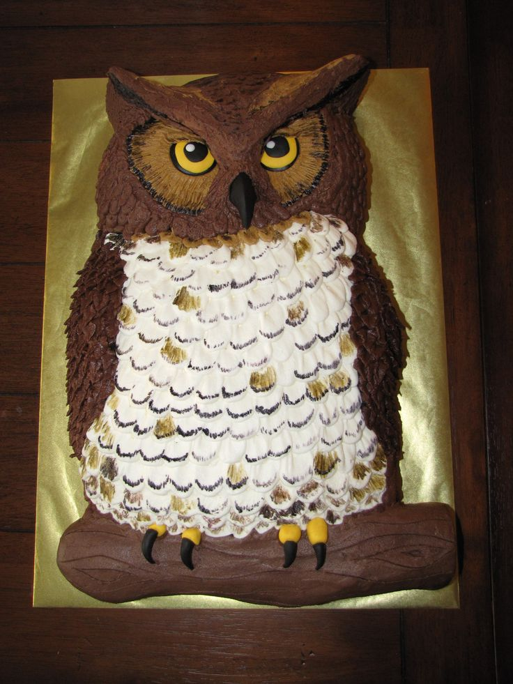 Owl cake - The birthday boy wanted a realistic looking owl cake... so here's what I came up with.  Sculpted from two 11x15 sheet cakes, all buttercream except for the fondant eyes, beak and feet.