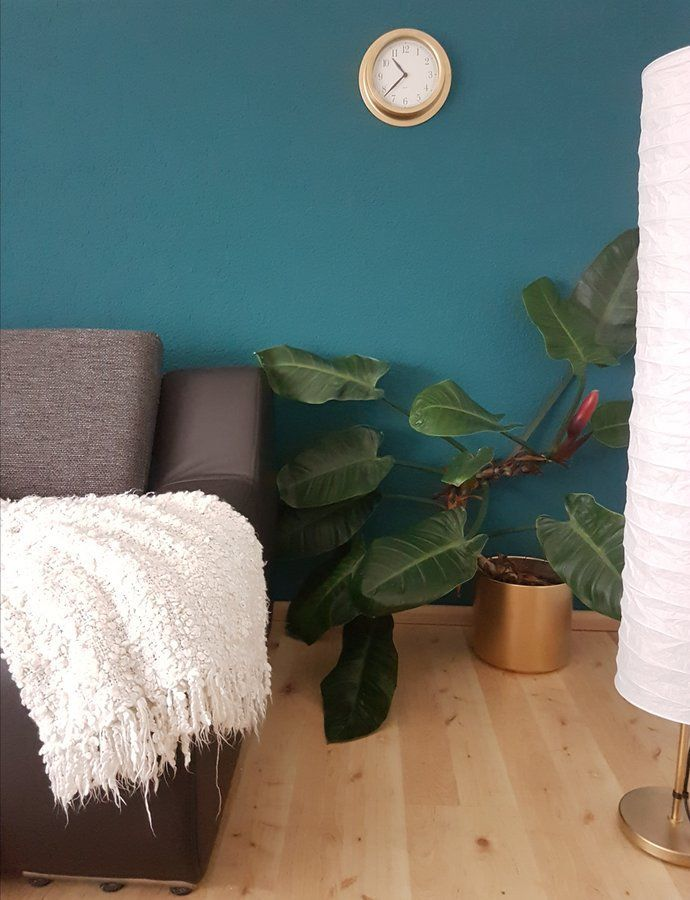 Lieblingsfarbe Petrol  Wohnideen  Wandfarbe wohnzimmer Wandfarbe kinderzimmer und
