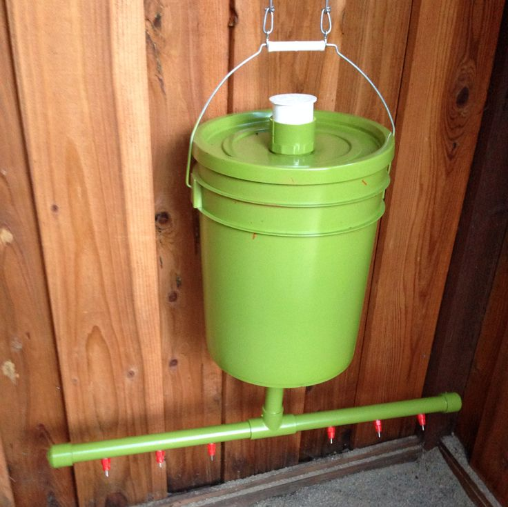 This is my chicken water feeder that I made that keeps the water fresh without making a mess and keeps the flies out. #chickens # crooks #chicken-coop
