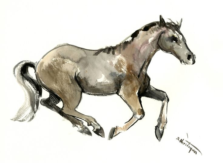 Best 25+ Horse sketch ideas on Pinterest | Sketches of ...