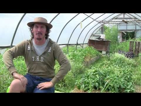 Permaculture asks what is your family fabric?