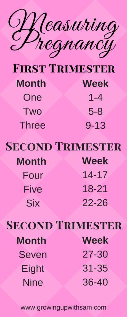 Measuring Pregnancy | Pregnancy Chart | First Trimester Pregnancy Resources, Tips, and Tricks | FREE Pregnancy Journal Digital Workbook.