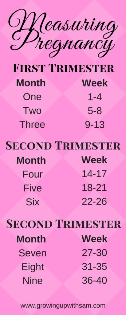 Measuring Pregnancy | Pregnancy Chart | First Trimester Pregnancy Resources, Tips, and Tricks | FREE Pregnancy Journal Digital Workbook.