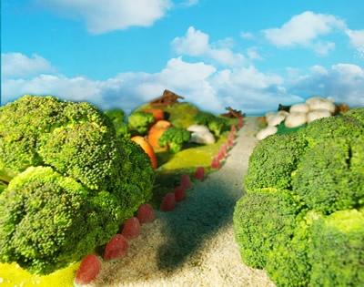 Bosque de brócoli · ANA MARÍA GAVIRIA · Fotografía 2011 . Publicidad · Colegiatura Colombiana · Medellín-Colombia.