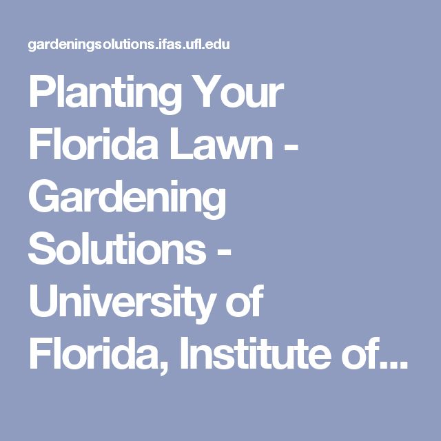Planting Your Florida Lawn - Gardening Solutions - University of Florida, Institute of Food and Agricultural Sciences