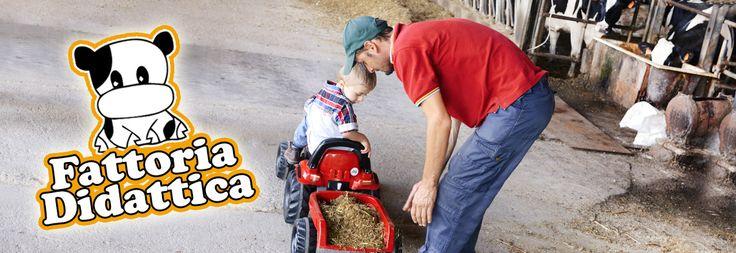 Esperienze reali, educative e divertenti per i tuoi bambini. Contattaci per organizzare una visita guidata all'interno della nostra fattoria, per gruppi scolastici e famiglie. #fattoriadidattica