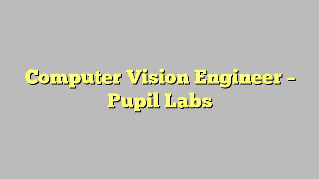 Computer Vision Engineer - Pupil Labs