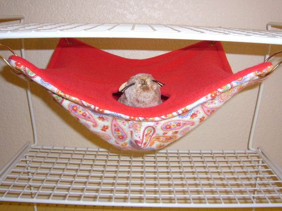 "Hide Away Hammock ""Paisley Print with Red Fleece Lining"" Rat, Ferret, Sugar Glider. $11.50, via Etsy."