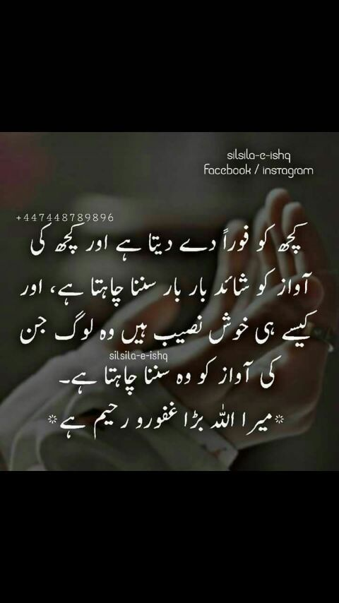 Pin by Khushi S on Urdu quotes | Sufi quotes, Urdu quotes