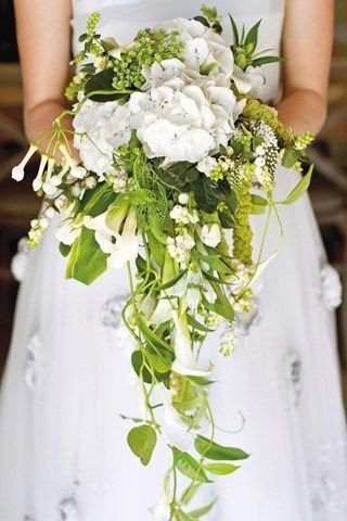 Cascade bouquet styles. White hydrangeas, trailing snowberries, passion-flower foliage, delphinium and green amaranthus.