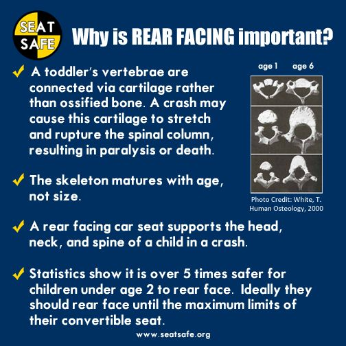Car Seat Safety Why Rear Facing Is Important Pinterest Seats And
