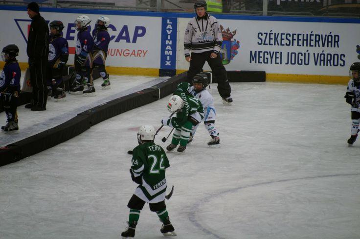 marcellhockey: Winter Classic 2013 Budapest