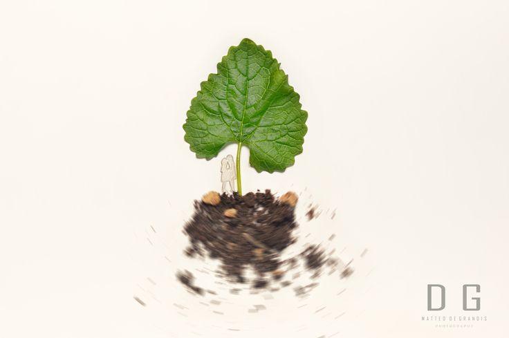 LiFe. #Leaf #Green #Kiss #Copule #Heart #Art #Tree #Man #Woman #Nikon #Surreal #Conceptual #Photography #Photo #Amore #Vita