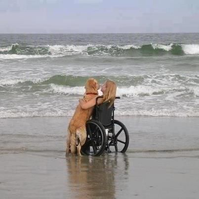 Amazing Pictures - Pics15. Nothing like a Golden for love and friendship!