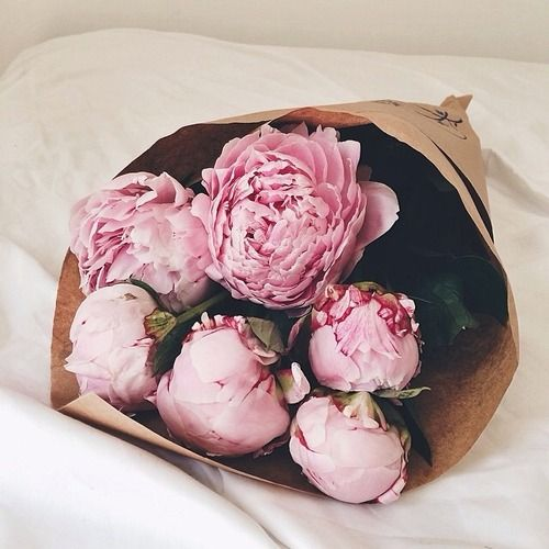 Mis flores favoritas !!