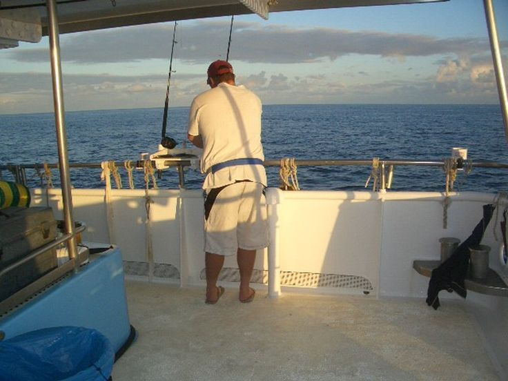 http://amytiadventure.com.au/ #ecotourism #queensland #australia