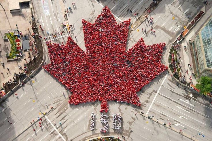 Happy Canada day to my fellow Canadians.