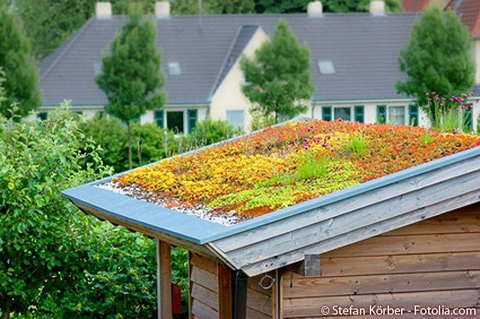 10 Tipps - Gartenhäuser richtig bauen