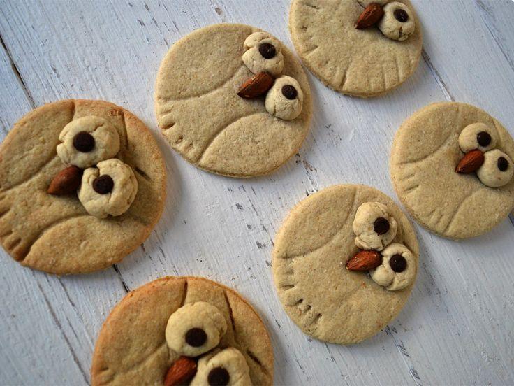 Kreative Kekse für Weihnachten