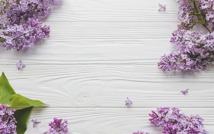 Download wallpapers lilac, light wooden background, spring flowers, purple spring flowers