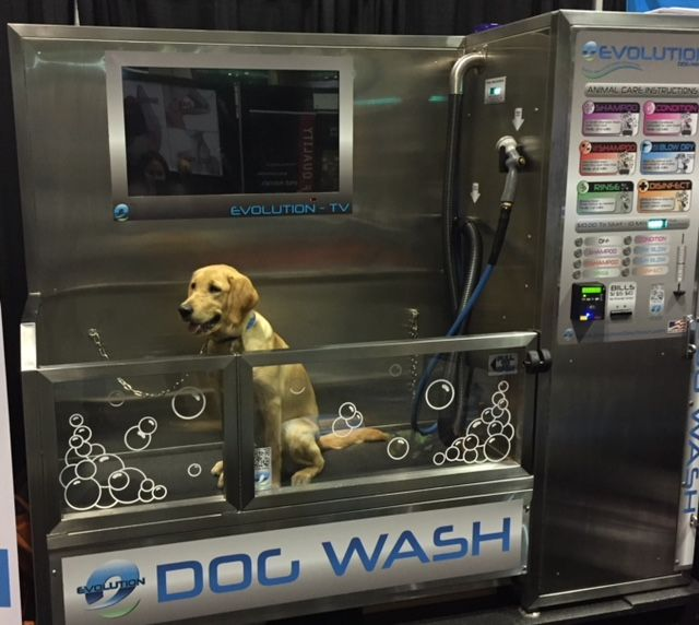 19 best evolution dog wash in action images on pinterest chili setting up a commercial dog bath will give tenants a place to wash their pet solutioingenieria Choice Image