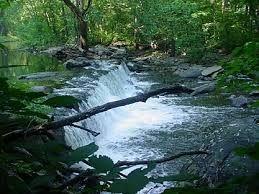édesvíz: Tavak és folyók vize. A teljes földi vízkészletből az édesvíz csak 1%.