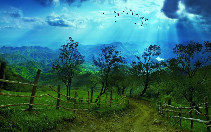 Dirt Road Surrounded by Beautiful Nature desktop wallpaper ...