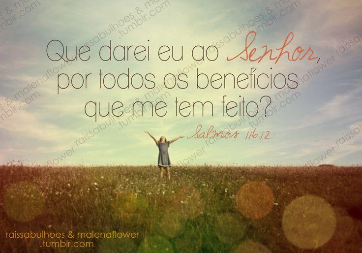 ← Que darei eu ao Senhor por todos os benefícios que me tem feito? Salmos 116;12