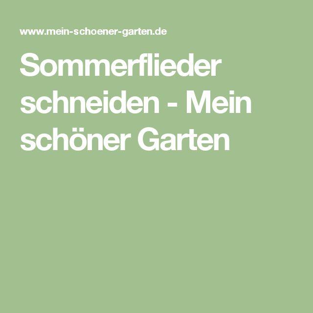 Sommerflieder schneiden - Mein schöner Garten