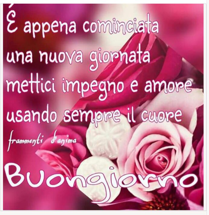 1597 best images about buon giorno on pinterest frase for Buongiorno sms divertenti