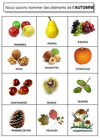 imagier de l'automne ( vocabulaire de l'automne)
