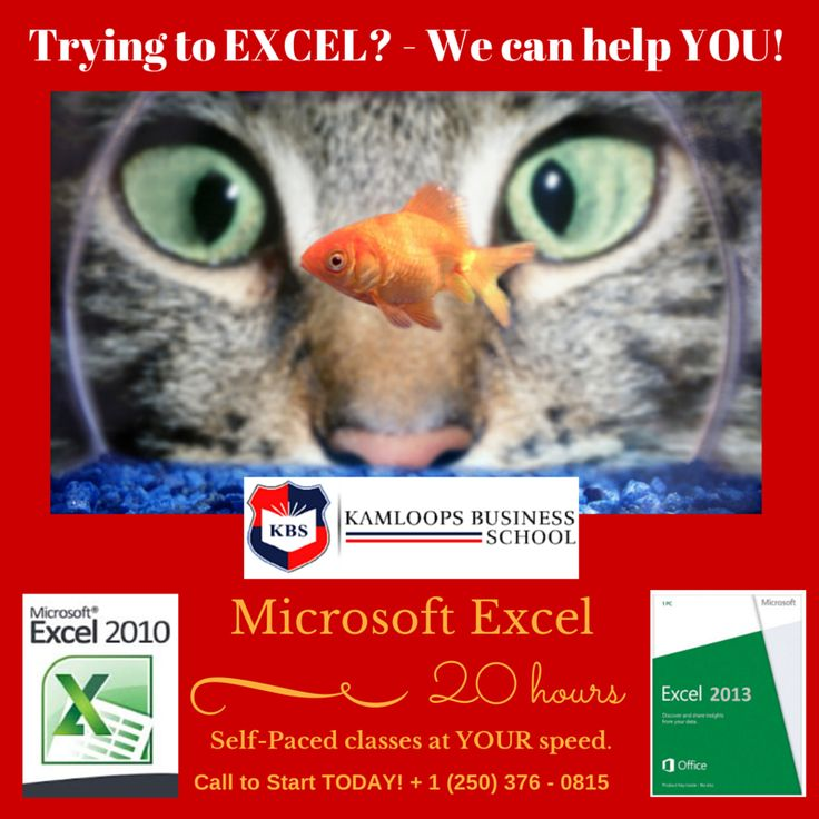 Trying to Excel? We can help YOU! Upgrade your #Microsoft #Excel skills with KBS self-paced training at only 4 hours per day for a total of 20 hours. Start Monday, October 20! http://bit.ly/1nLuF3x